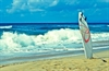 Surf your way to brand success