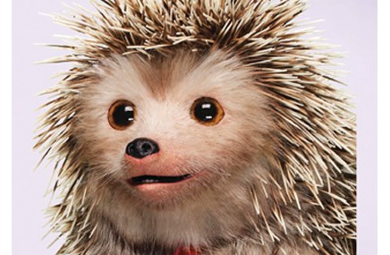 Sanofi goes prickly-cute with Fluzone DTC effort