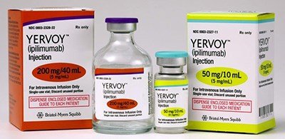 Analysts haven't soured on Yervoy, despite miss in prostate cancer