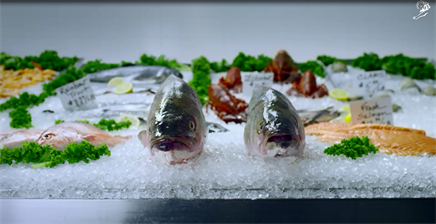AstraZeneca pulls Take it From a Fish campaign