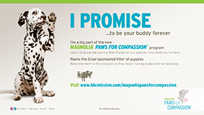 Magnolia's Paws for Compassion, for Eisai, shows the Biolumina Group's passion and drive