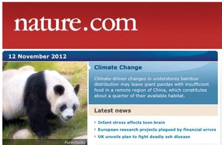 Professional Media briefs: December 2012