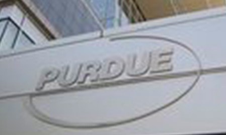 Purdue pain drug gets priority status